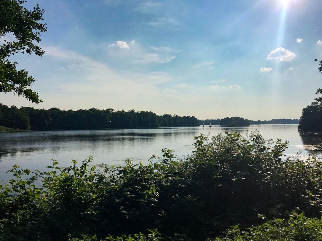 Natur am Unterbacher See